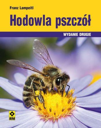 Hodowla pszczół dla początkujących